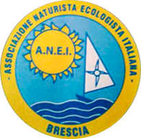 logo-anei-new
